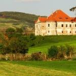 Radak Perky Castle 01